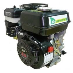 Двигател GARDENIA LT 210